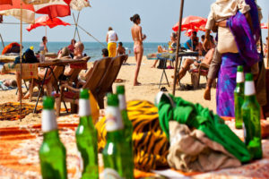 Goa Beach Travel Information and Travel Guide